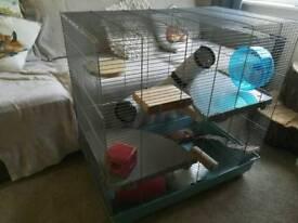 Rat/ chinchilla/ degu cage