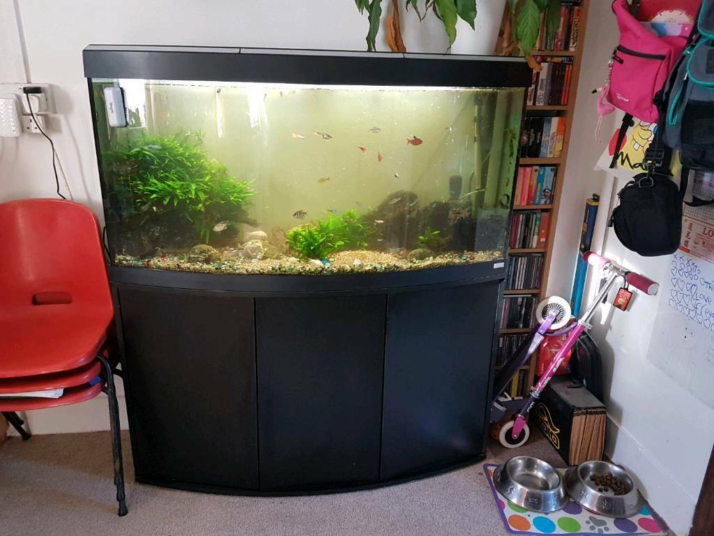 240 litre aquarium in plymouth devon gumtree. Black Bedroom Furniture Sets. Home Design Ideas