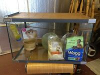 Gerbil/Hamster Glass Cage and accessories