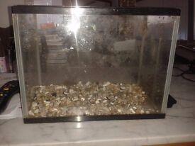 small aquariums x 3