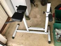 Free gym/exercise equipment Roman Chair Pro