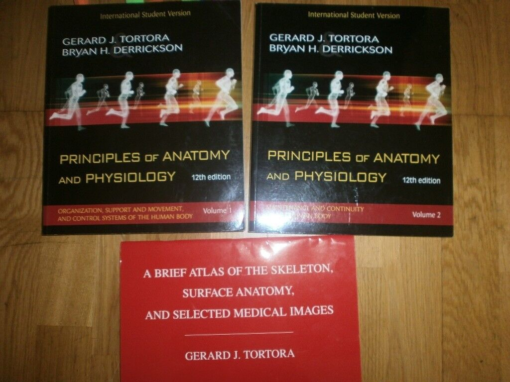 Luxury Principles Of Anatomy And Physiology Atlas Gallery ...