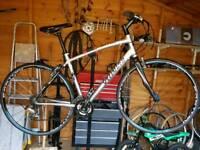 Specialized hybrid/road bike