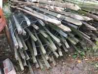 FREE Picket fencing. Fence posts and wiring, some chicken wire. About 15-20 meters. Collection Only