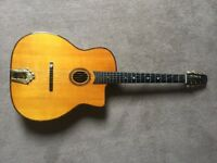 Gitane John Jorgenson DG300 Gypsy Jazz Guitar