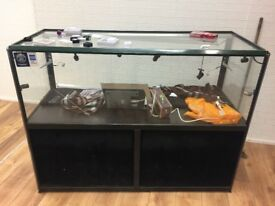 Glass Display cabinet for shop retail length 150 cm x width 60 cm x height 113 cm