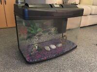 large glass fish tank 64 litres