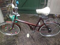 Raleigh bike ex condition £45 Ono
