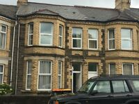 HMO Landlords - Want a Long-Term Professional Let for your Newport HMO?