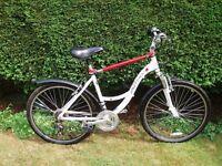 Ladies & Gents Bikes