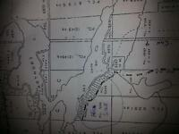 40 ACRES OF TREED PROPERTY