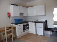STUDIO FLAT - POLSLOE RD - CLOSE TO RD&E AND TOWN CENTER - INCLUSIVE OF C TAX AND W RATES £500.00