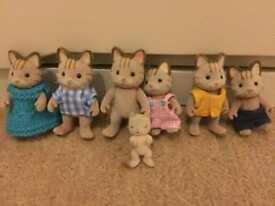 Sylvanian families celebration cats
