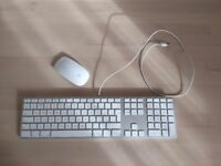 Apple Magic Mouse and Wired Keyboard