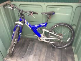 Raleigh boys bike