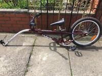 Ride along bike for kids
