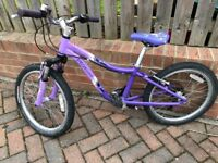 Kids Specialized Hotrock bike 20""