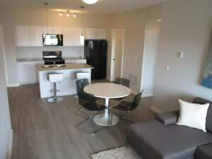 Beautiful Newer 2 Bdrm w/ In-Suite Laundry & A/C in Fort Sask