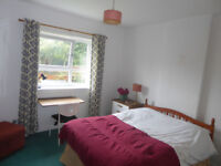 1 double bedroom in shared house with garden for exchange student