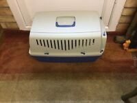 Small dogs carry box