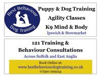 Puppy & Dog Training - Agility and K9 Mind & Body Classes