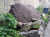 SOIL FREE!!! Huge amount of good quality soil. Collect anytime
