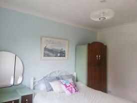 Professionals wanted for 2 double rooms in big house