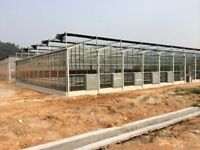 greenhouse supplier from China