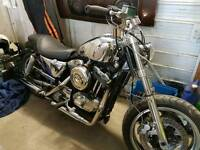 Harley davidson 1200 buell custom