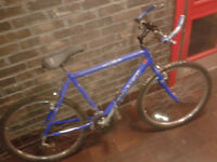 FULLY SERVICED Men Women RALEIGH 21 Gear Mountain Bicycle, 26 inch wheels FULLY WORKING