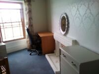 Rooms available in shared house, Upper Bangor