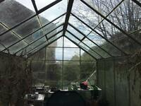 Greenhouse 8ft x 12 ft