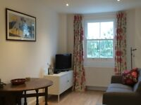 Lovely one bedroom flat in Hanwell, Ealing - £1100 all bills included