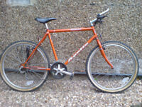 Large 21 inch frame Terra bike in very good condition