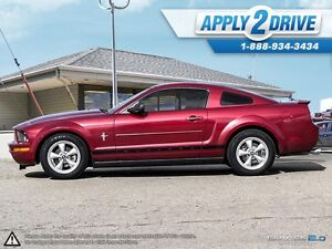 2008 Ford Mustang  Leather, Cold Air, Throttle Spacer, Pypes Edmonton Edmonton Area image 3