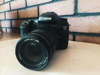 Canon 7D w/ Canon 55-250mm f/1.4 lens + goodies