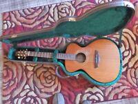 Vintage, Gordon Giltrap, Acoustic guitar with a quality hard case.