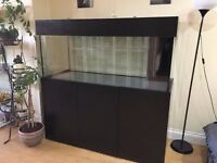 Marine/Tropical Fish Tank with Sump/Perfect Condition 500L