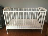 Cot Bed ( Can Deliver )