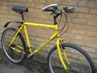 "XL 22"" Raleigh MAX mountain bike - central Oxford - ready to ride"