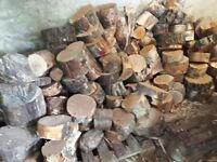 Firewood rings split yourself into logs hardwood and softwood
