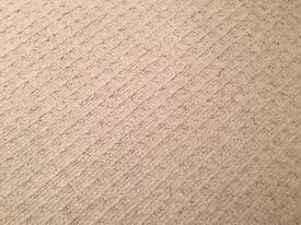 Carpet 3140mm x 3350mm. To suit room 10ft x 10ft