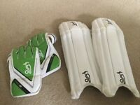 Junior wicket keeping pads and gloves