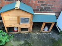 Chicken coop/hut with 2 silkies