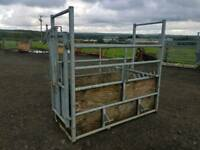 Iae economy cattle crush farm livestock tractor