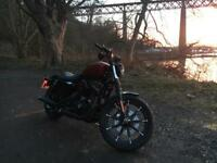 Harley Davidson Sportster Iron 883 - Extras included