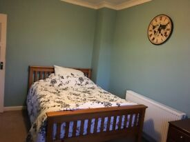 Double room for immediate move in