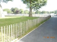 Used Chestnut fencing free to collector