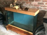 large fish tank/vivarium for sale 47 inch (119 cm) long 29 inch (74 cm) tall 15 inch (38 cm) wide.