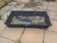 Indoor guinea pig cages